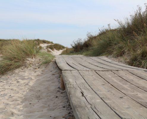 Steg am Strand - Sandhammaren