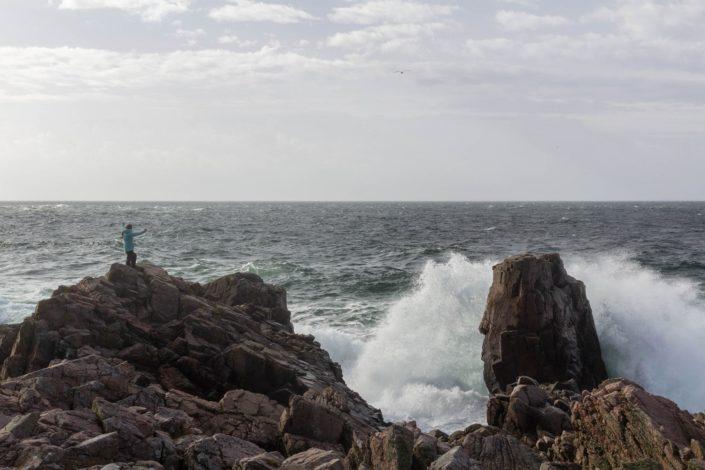 Wellen im Kullaberg Naturreservat