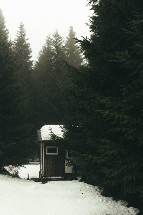 Harz im Winter