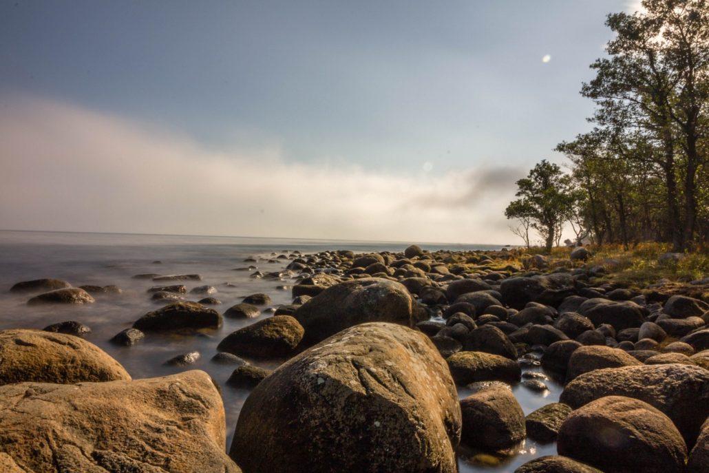 Morgennebel im Nationalpark Stenshuvud