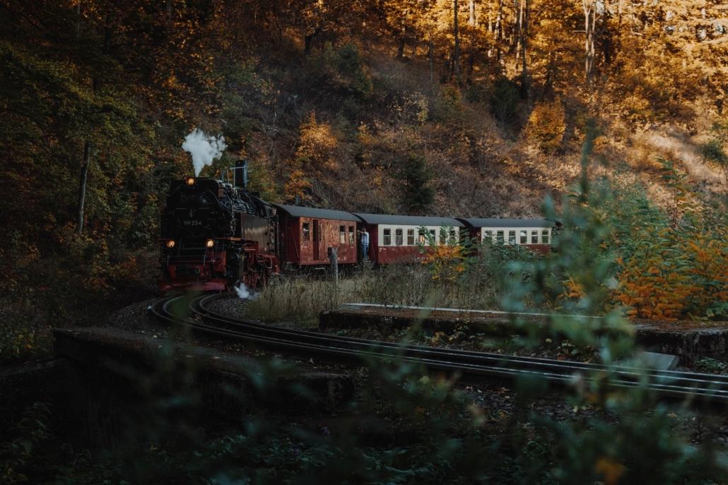 Harzquerbahn Steinerne Renne