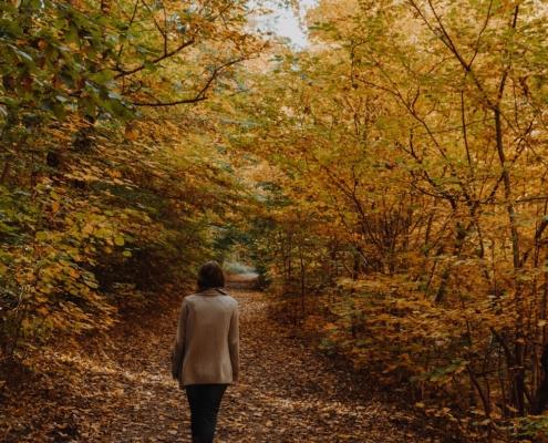 Steinerne Renne Herbst