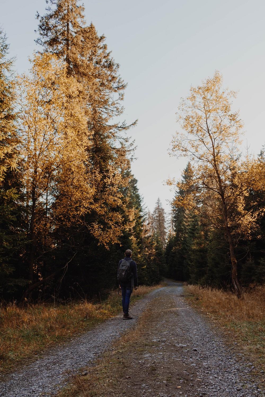 Wanderung Steinerne Renne