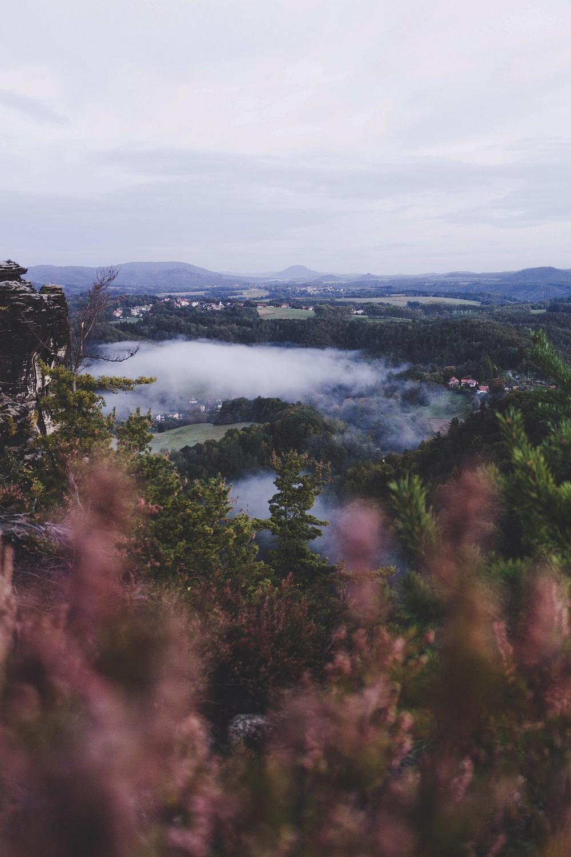 Nebel in der Sächsischen Schweiz