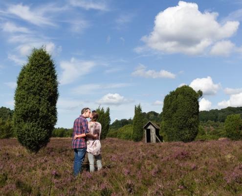 Heidefläche in der Lüneburger Heide