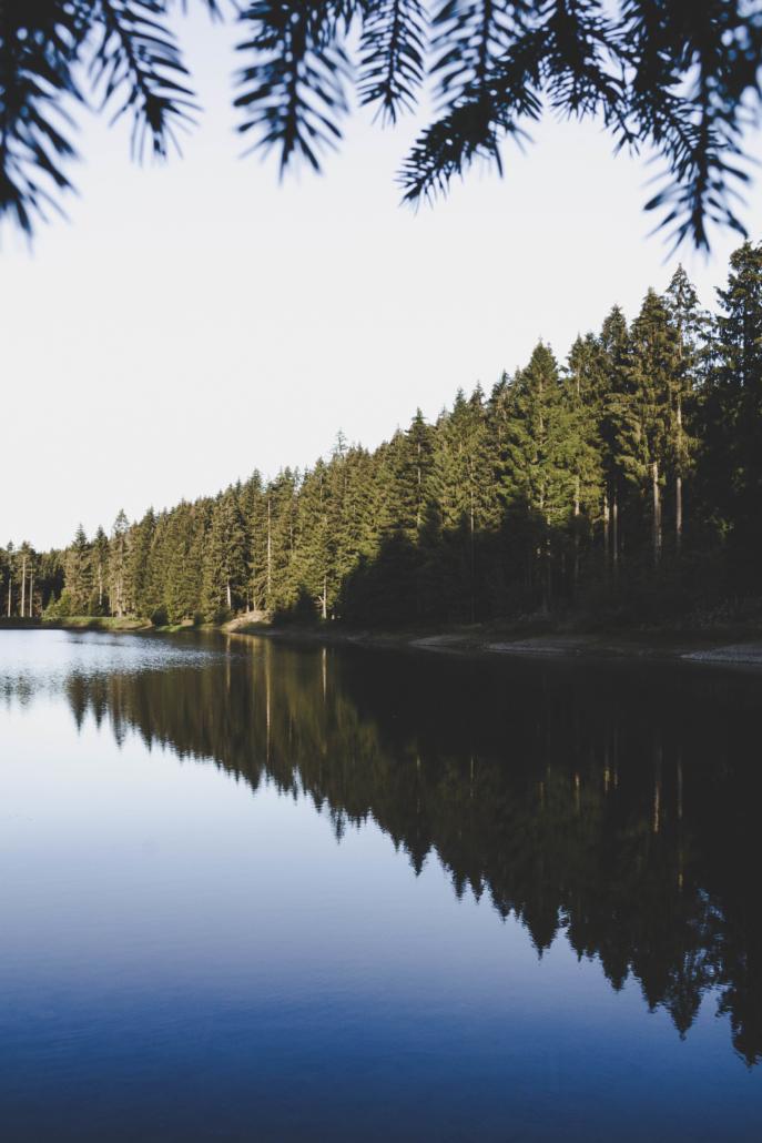 Neuer Grumbacher Teich Spiegelung im See