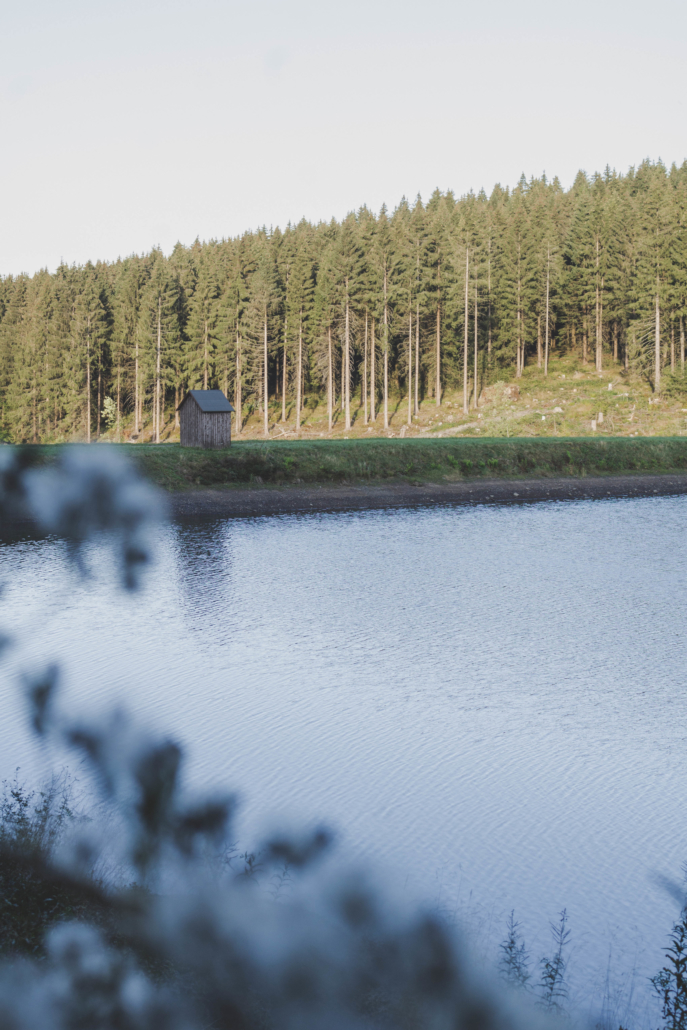 Holzhütte am neuen Grumbacher Teich