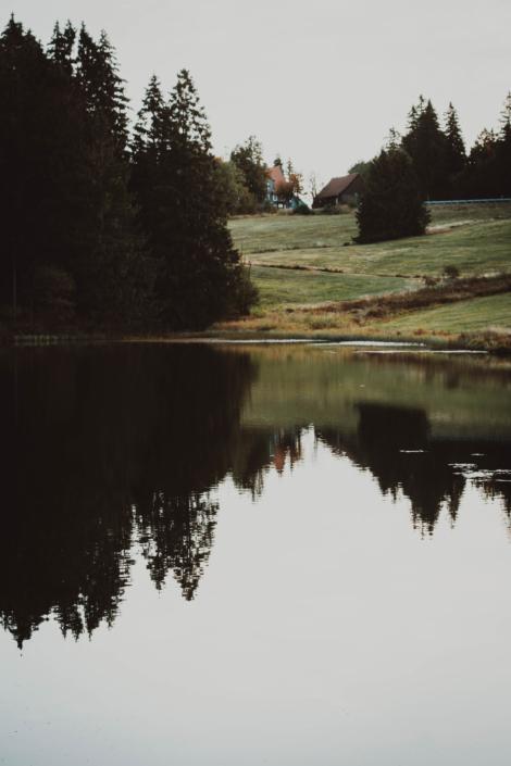 Hütte am Auerhahn Teich