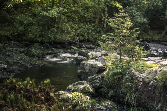 Wasserfall im Okertal