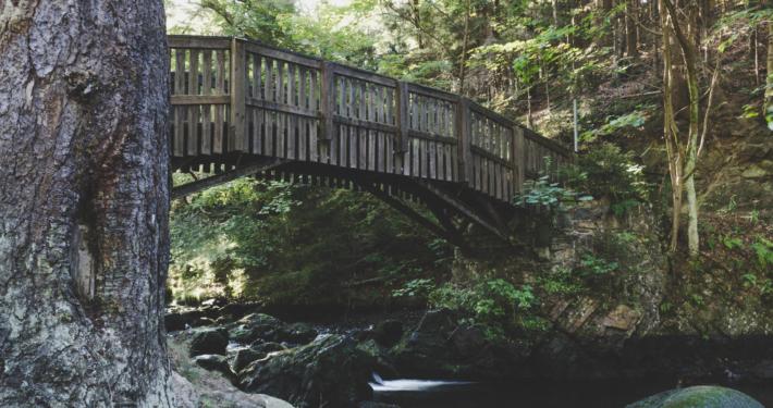 Brücke auf die Verlobungsinsel im Okertal
