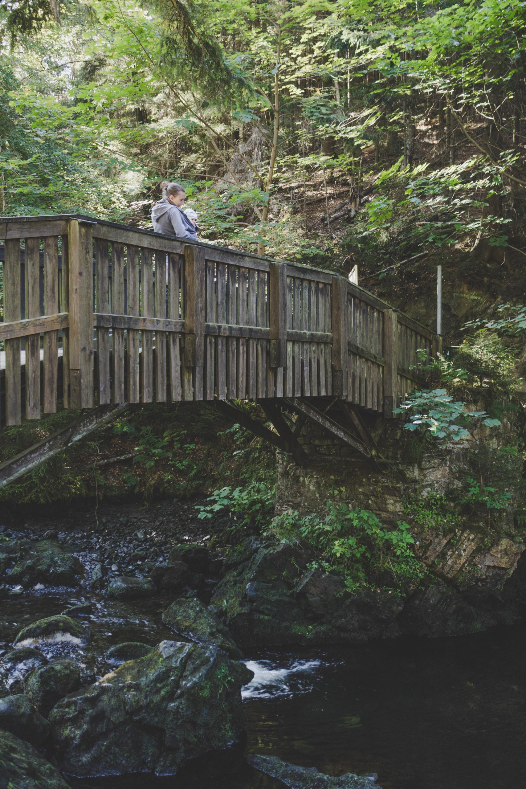 Brücke zur Verlobungsinsel im Okertal-