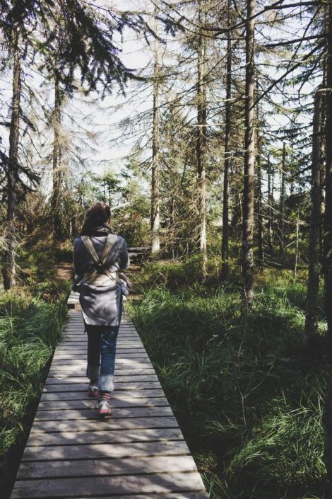 Auf dem Holzsteg im Torfhausmoor