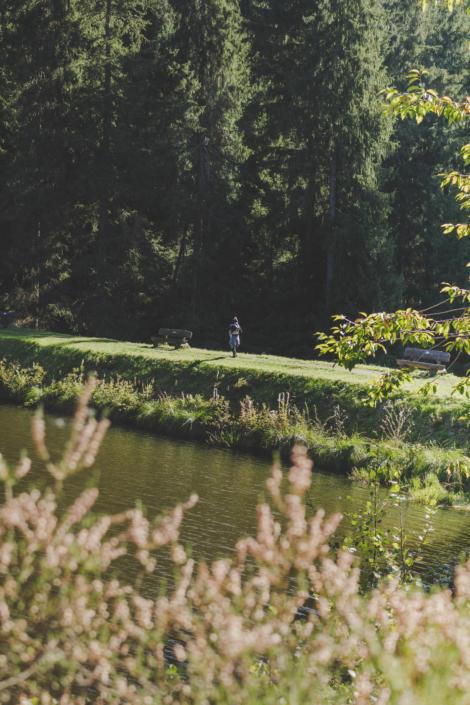 Wanderweg am Grumbacher Teich